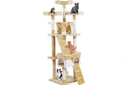 Δέντρο Ονυχοδρόμιο Γάτας με 5 επίπεδα