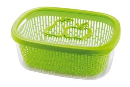 Δοχείο Αποθήκευσης με καπάκι και αφαιρούμενο καλάθι για φρούτα σε πράσινο χρώμα