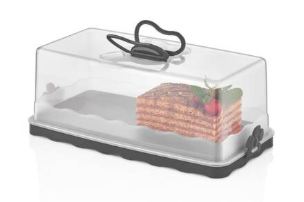 Herzberg Πλαστικό Δοχείο αποθήκευσης Κέικ με Αεροστεγές Καπάκι σε ορθογώνιο σχήμα